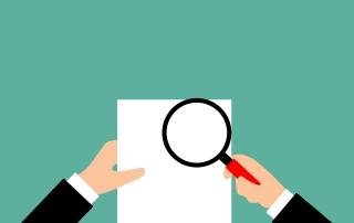 Expert Witness for Litigation