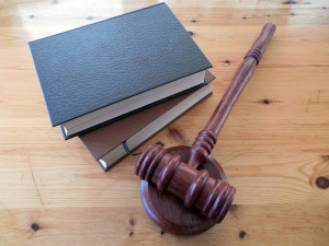 litigation and expert witness